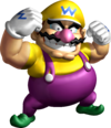 SM64DS Wario.png
