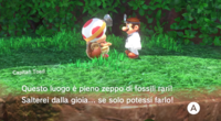 Capitan-Toad-Cascate.png